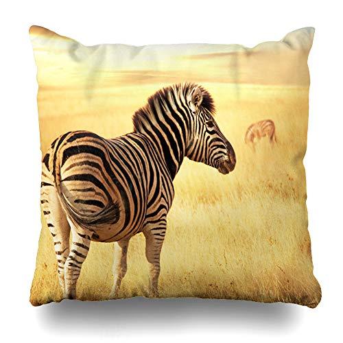 Suesoso Decorative Pillows Case 18 x 18 Inch Zebras at Sunsetthrow Pillowcover Cushion Decorative Home Decor
