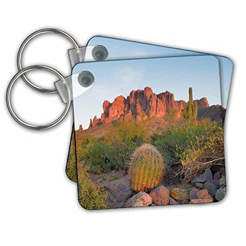 Danita Delimont - Deserts - Arizona, Lost Dutchman State Park. Superstition Mountains landscape - Key Chains - set of 2 Key Chains (kc_278464_1)