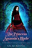 Amazon.com: The Princess Assassin's Blade: A Dragonsoul Novel (Dragonshadow Chronicles Book 1) eBook: McKenna, K. M. : Kindle Store