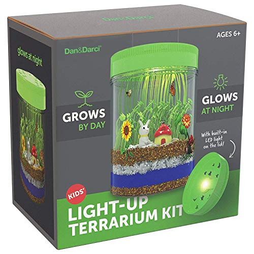 LightUp Terrarium Kit For