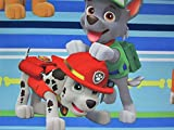 Paw Patrol Puppy Hero (FLAT SHEET ONLY) Size TWIN Boys Girls Kids Bedding