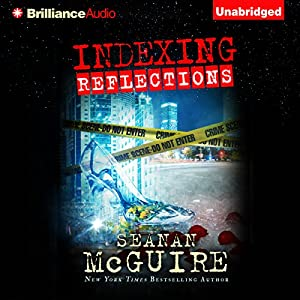 Indexing: Reflections Audiobook