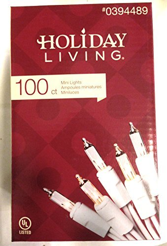 Holiday Living 100ct Mini Lights, White Lights with White Cord,