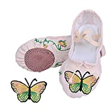 LEEGEEL Girls Canvas Ballet Shoes Pink Dance Flat Embroidered Ballet Slippers for kids