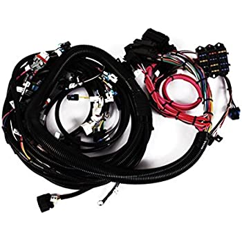 Painless Wiring Harness Ls on ls wiring harness, engine wiring harness, lsx wiring harness, lq4 wiring harness, ls6 wiring harness, ls7 wiring harness, gm wiring harness, ecm wiring harness, 4l 80 wiring harness, sr20det wiring harness,