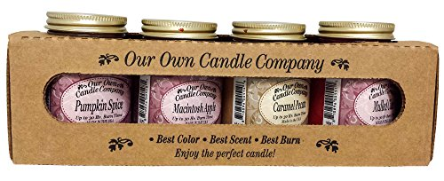 Our Own Candle Company 4 Pack Fall Assortment Mini Mason Jar Candles - 3.5 Oz Caramel Pecan, 3.5 Oz Mulled Cider, 3.5 Oz Pumpkin Spice, 3.5 Oz Macintosh Apple, (Jar Candle Set)