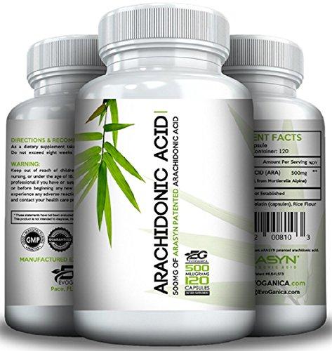 (ARACHIDONIC Acid (500mg x 120ct) (10%) by EVOGANICA)