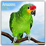 Amazon Parrot Calendar - Parrot Calendar - Bird Calendars - Calendars 2017-2018 Wall Calendars - Monthly Wall Calendar by Avonside