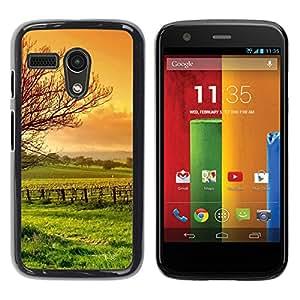 "For Motorola Moto G ( 1st Generation ) , S-type Naturaleza Hermosa Forrest Verde 3"" - Arte & diseño plástico duro Fundas Cover Cubre Hard Case Cover"