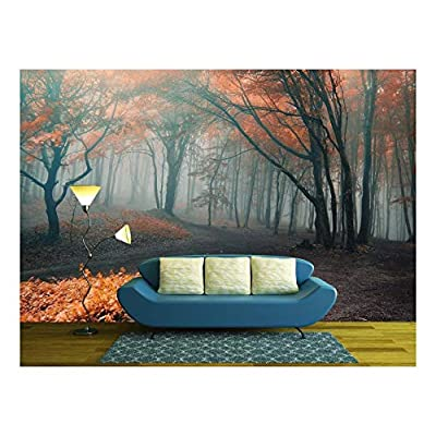 Trees with Red Leafs in a Mysterious Fantasy Forest with Fog, Top Quality Design, Elegant Design