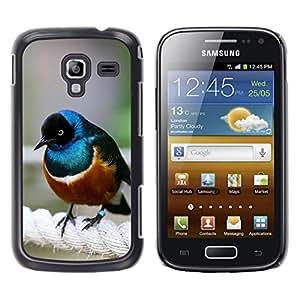 YOYOYO Smartphone Protección Defender Duro Negro Funda Imagen Diseño Carcasa Tapa Case Skin Cover Para Samsung Galaxy Ace 2 I8160 Ace II X S7560M - pájaro azul naturaleza mar marrón lindo pequeña