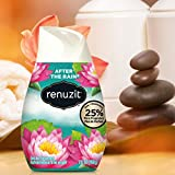Renuzit Adjustable Air Freshener Gel, After The
