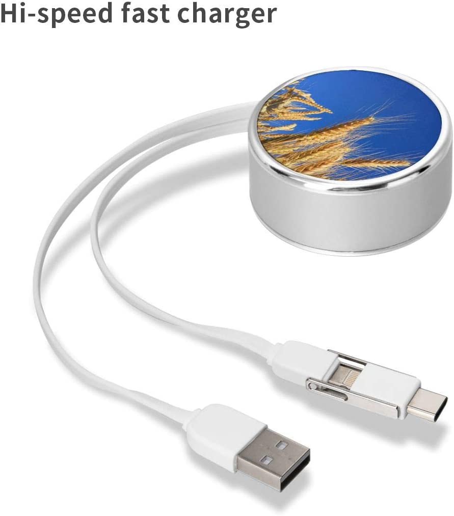 Charging Cable Round USB Data Cable Can Be Charged and Data Transmission Synchronous Fast Charging Cable-Closeup Photography of Brown Wheats