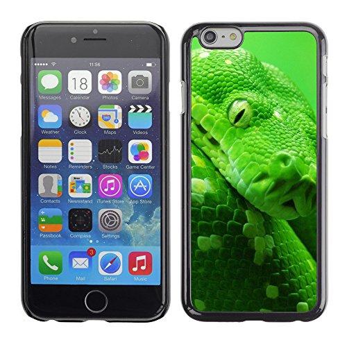 "Premio Sottile Slim Cassa Custodia Case Cover Shell // V00003374 vert boa snake // Apple iPhone 6 6S 6G 4.7"""