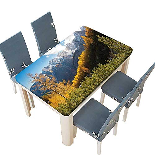 (PINAFORE Polyester Panorama of Mountain Rage Valley Ice Peaks Hills Beech Trees Balkans Multi Spillproof Fabric Tablecloth W61 x L100 INCH (Elastic Edge))