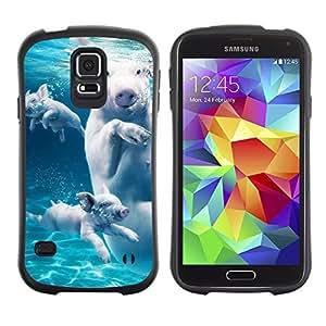 Hybrid Anti-Shock Bumper Case for Samsung Galaxy S5 / Swimming Pigs