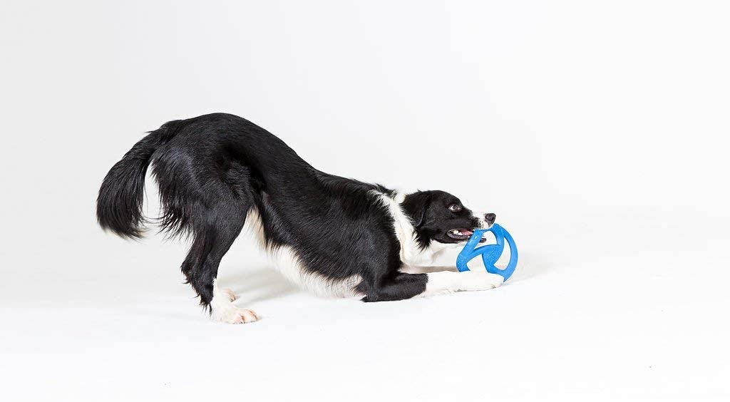 Green WO Design WO Disc USA Made Dog Frisbee Tug Toy