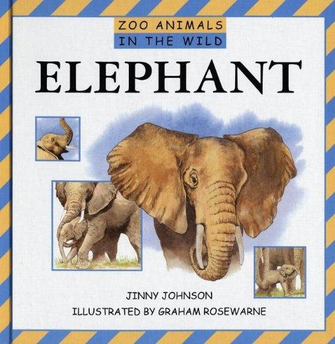 Read Online Elephant (Zoo Animals in the Wild) pdf