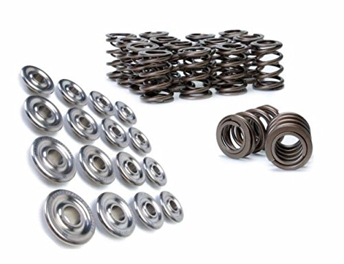 Pro Titanium Retainers Series - Skunk2 Pro Series XP Dual Valve Springs and Titanium Retainers Set of 16 For Acura Integra, Honda Civic/del Sol