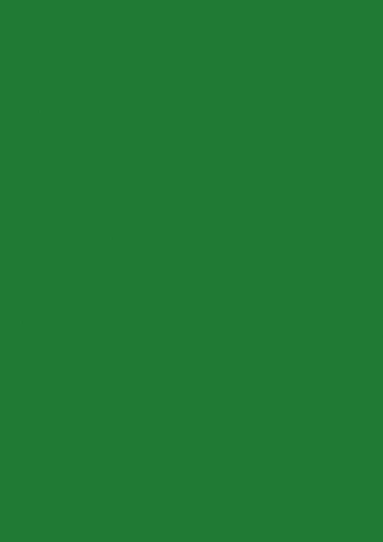 Baier & Schneider - Fogli di carta multiuso, formato A4, 80 g/mq, 50 fogli, colore: Verde scuro opaco 105125059