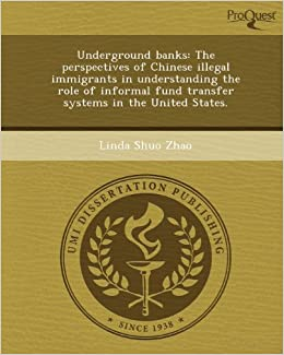 financing illegal migration zhao linda