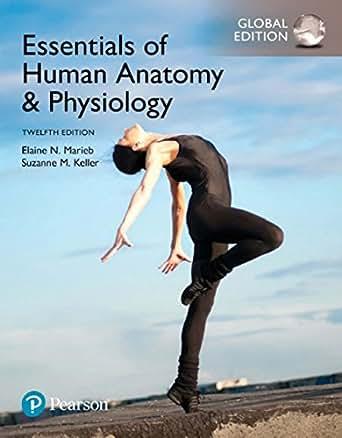 Amazon.com: Essentials of Human Anatomy & Physiology, Global Edition ...