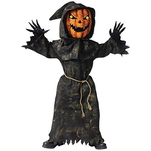 Baoer (Bobble Head Pumpkin Costume)