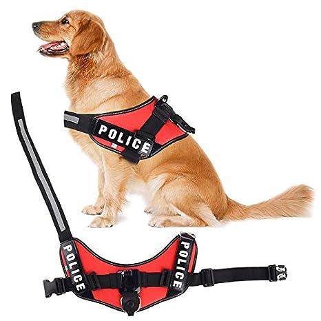 Goliton Ajustable podido recuperar Montaje arnés cinturón de Correa de Pecho Perro para Gopro Hero1 2 3 4 3+ cámara: Amazon.es: Electrónica