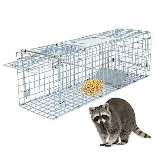 Review ZENY Live Animal Cage Trap 24″ Steel Cage Catch Release Humane Rodent Cage for Rabbits, Stray Cat, Squirrel, Raccoon, Mole, Gopher, Chicken, Opossum, Skunk & Chipmunks