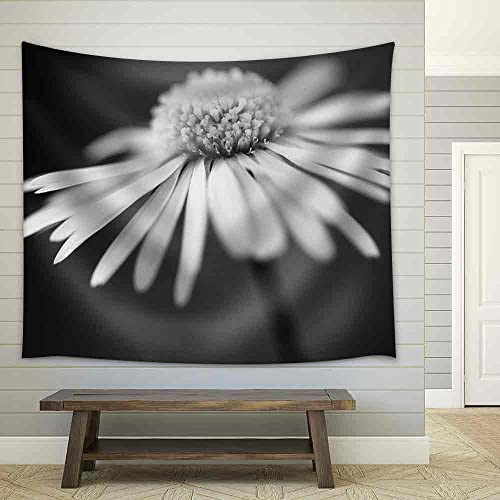 Close Up of White Daisy on Artistic Background with Soft Focus Fabric Wall