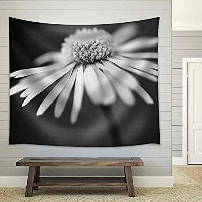 Amazing Creative Design, Professional Creation, Close Up of White Daisy on Artistic Background with Soft Focus Fabric Wall