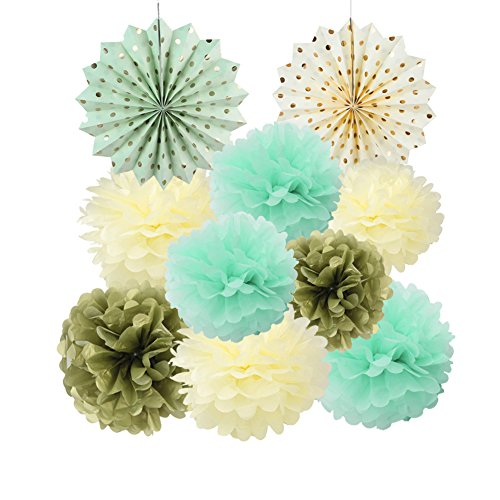 Mint Cream Gold Tissue Paper Pom Poms Flowers Gold Dot Paper Fans Collection for Wedding Birthday Home Decoration SUNBEAUTY,10pcs(8inch 10inch - Time Epacket Shipping