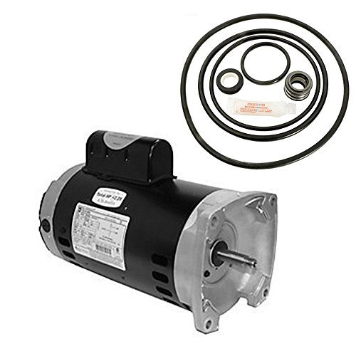 Sta-Rite Dyna-Glas 2HP MPRA6G-155L Replacement Motor Kit AO Smith USQ1202 w/ GO-KIT-47