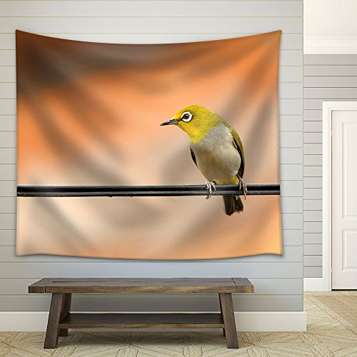 a Bird Standing on The Wire Fabric Wall