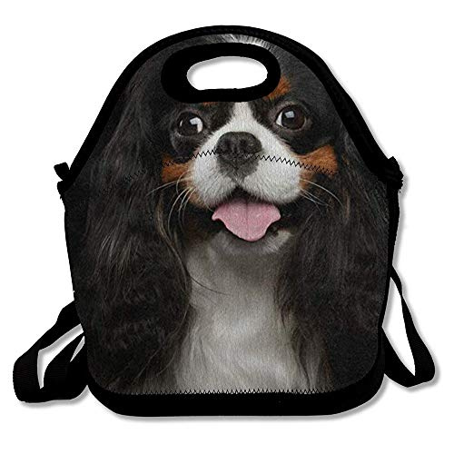 - Lunch Bag Tote Bag Cavalier King Charles Spaniel Dog Travel Picnic Organizer Lunch Holder Handbags Lunch Bag Box for Work School
