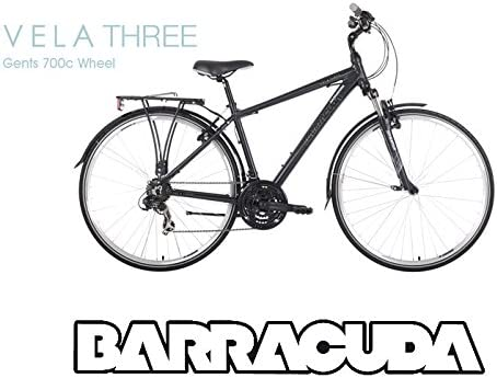 BARRACUDA - Bicicleta híbrida Vela 3 para hombre, marco ligero de ...