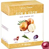 Nature's Blossom Onion Growing Kit - 4 Types of Onions to Grow from Seed