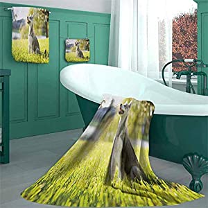 Alaskan Malamute Absorbent Towel Set, Klee Kai Puppy Sitting on Grass Looking Design Pattern Bathroom Set, 1 Bath Towels 1 Hand Towels 1 Washcloth Soft Plush Absorbent Machine(3 Piece Set - M) 1
