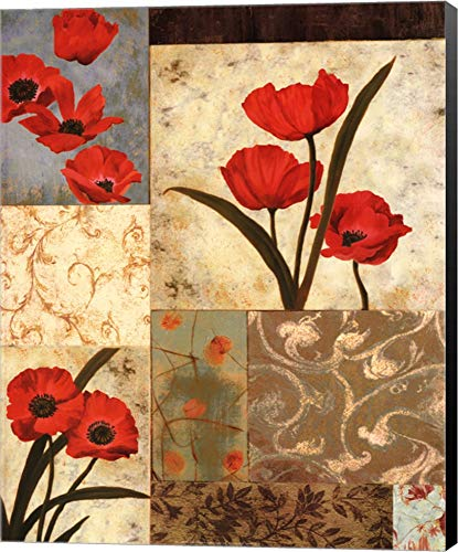 (Poppy Damasque by T.C. Chiu Canvas Art Wall Picture, Museum Wrapped with Black Sides, 16 x 20 inches )