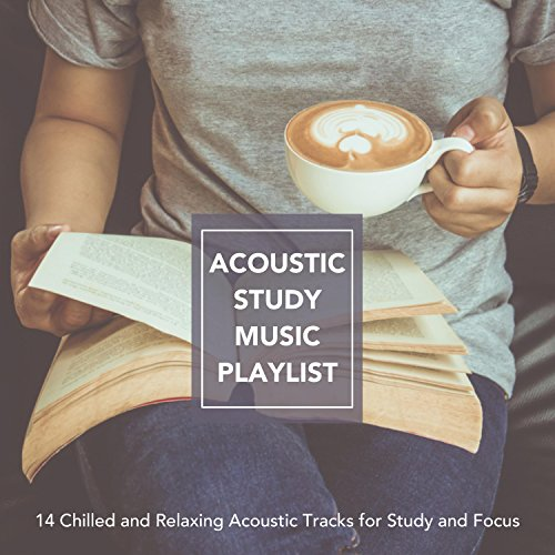 Acoustic Study Vibes on Spotify