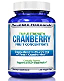 Cranberry Pills – Triple Strength PACRAN Concentrate – Supports Urinary Tract Health – 120 Soy-Free Non-GMO Vegetarian Capsules (1 Pack) For Sale