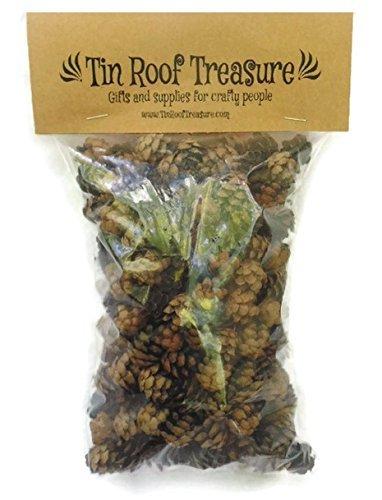 Tin Roof Treasure Natural Eastern Hemlock Mini Pine Cones 300 Count