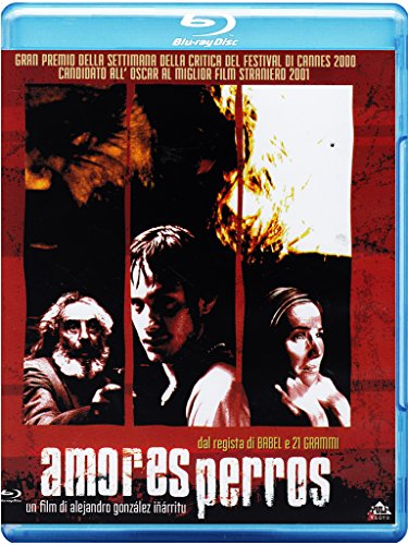 amores perros (blu-ray) blu_ray Italian Import