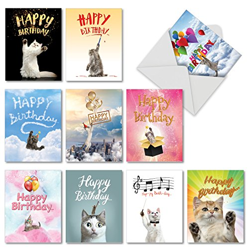 Greeting Birthday Cat Card (10 'Cat Sent' Boxed Happy Birthday Cards with Envelopes 4 x 5.12 inch - Assorted Blank Bday Cards with Cats and Kittens - Funny Greetings for Birthday Congratulations, Kids, Adults AM6112BDB-B1x10)