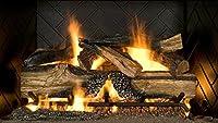 Sure Heat CS30DBNL-60 Vented Gas Firepla...