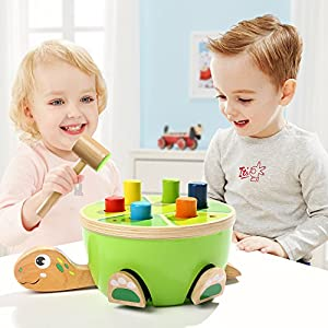 TOP BRIGHT Toddler Toys Pounding Bench for Preschool Boys Girls – Tortoise Wooden Toy for Age 2 with Mallet and 6 Color Pegs by
