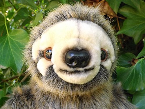 Large Stuffed Sloth - 24&Quot; Realistic Stuffed Animal Sloth -