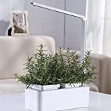 Let Nature Inspire you Bring nature home and enjoy a green, peaceful and inspiring environment with this amazing herb garden kit by SavvyGrow! Decorate your office desk and enhance your creativity with this perfectly functional indoor planter...