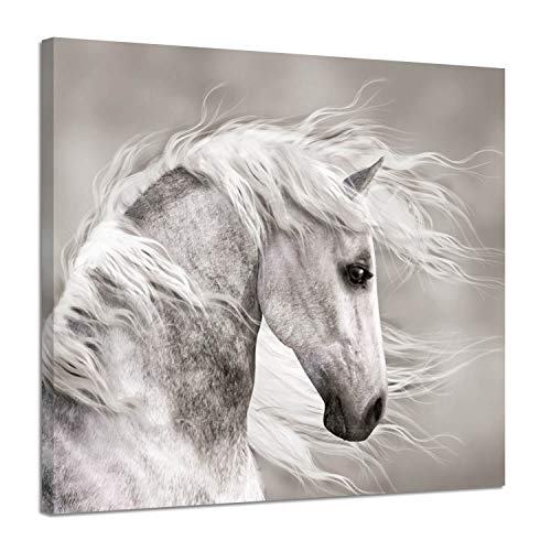 Horse Artwork - Animals Artwork Wildlife Picture Painting: White Horse Head Graphic Art Print for Wall Decor