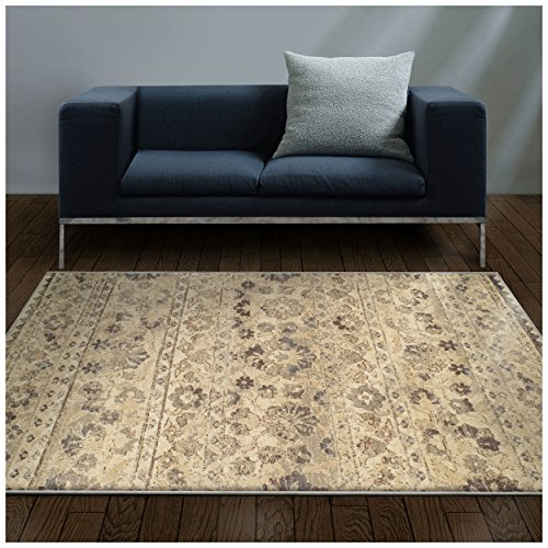 (Superior Fawn Collection Area Rug, 8mm Pile Height with Jute Backing, Chic Distressed Floral Medallion Pattern, Fashionable and Affordable Woven Rugs - 4' x 6' Rug, Beige )